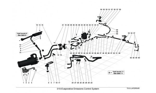 010-Evaporative Emissions Control System