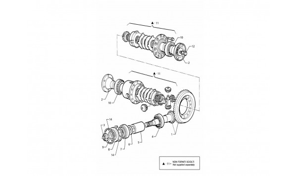 DIFFERENTIAL - INTERNAL PARTS