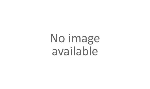 0152 DASHBOARD - TRIM -Applicable for RHD-